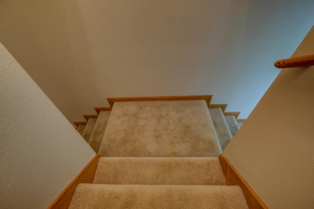 Basement Steps with 2 Openings